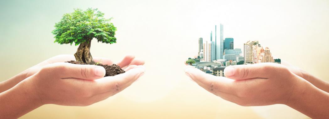 Plany Adaptacji do zmian klimatu dla 44 miast Polski opracowane